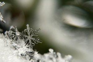 5 декабря: какой сегодня праздник, приметы, что нельзя делать