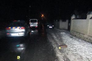 Пьяное ДТП в Житомирской области: под колесами легковушки погибла женщина