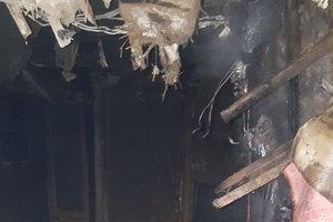 В Харькове пожар в жилом доме унес жизнь мужчины