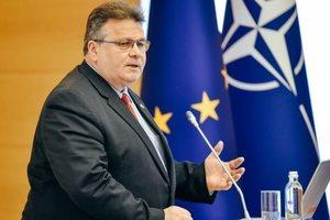Линкявичюс объяснил, против кого Литва ввела санкции за атаку в Керченском проливе