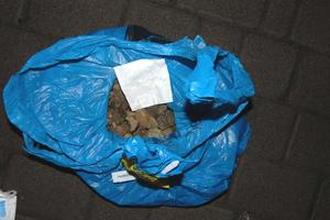 В Ровно задержали мужчину с двумя мешками янтаря