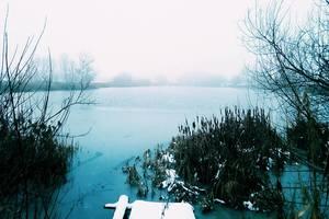 Опять метель: в Украину возвращается зима