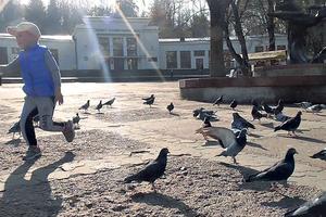 Майдан Незалежности. На главной площади можно и попить целебной воды, и покормить голубей. Фото: Дмитрий Стаховский