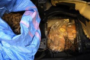 Контрабанда на миллион гривен: польские таможенники задержали украинца