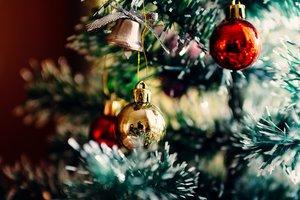 Живые, собранные и искусственные: какие новогодние елки украсили города Украины