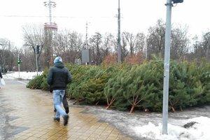 В Черниговской области на центральной площади поселка установили елку с кладбища