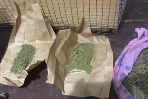 В Запорожской области мужчина хранил дома марихуану