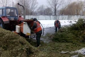 В Киеве заранее открыли пункт приема новогодних елок