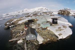 Украинские ученые в Антарктиде: Лекарство от рака может появиться лет через 20