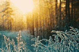 День зимнего солнцестояния 2018: традиции, обряды, приметы, что нельзя делать