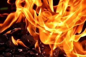 В Запорожье горела автомастерская: опубликованы фото