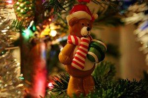 """Украсили сорняк: на фото показали """"самую лучшую в мире новогоднюю елку"""""""