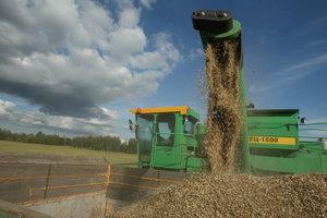 Урожай зерна в Украине побил все рекорды