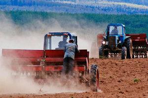 Проблемная реформа: что нужно знать о моратории на продажу земли