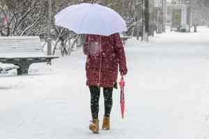 В Украину пришло потепление и вернулся снег: синоптики сообщили об изменении погоды