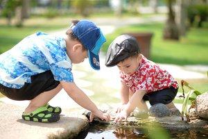 Как реагировать родителям, когда дети ссорятся из-за игрушки: совет психологов
