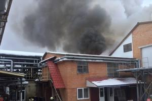 Мощный пожар на заводе в Тульчине: стали известны подробности