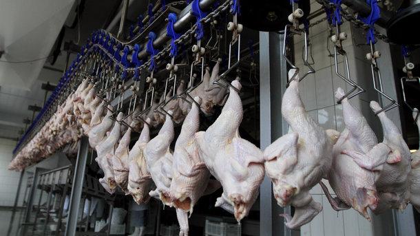 Китай возобновляет импорт птицы изУкраины