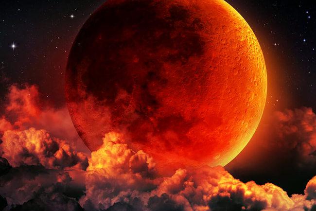 Лунное затмение 20 января 2019 года. Фото: Mycitylinks
