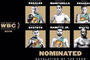 Украинец Александр Гвоздик претендует на престижную награду от WBC