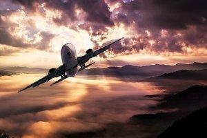 Устроивший дебош в самолете хоккеист рассказал свою версию случившегося
