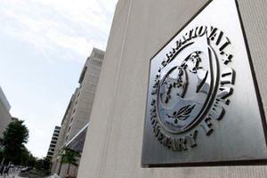 Сколько Украина выплатит по кредитам МВФ в 2019 году: названа колоссальная сумма