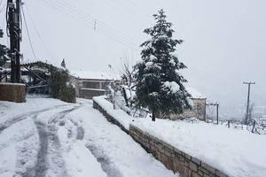 Болгария закрыла два пункта пропуска на границе из-за сильных снегопадов в Греции
