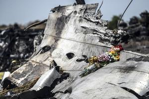 Нидерланды помогут семьям жертв катастрофы MH17 добиться компенсаций