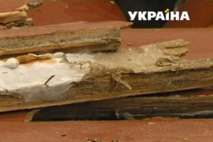 Опасный грибок: взрослые возмутились частыми болезнями детей в школе и детсаду Прикарпатья
