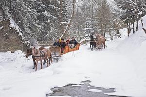 Рождество в стиле романтик: как прошел Winter Romantik Fest в Яремче
