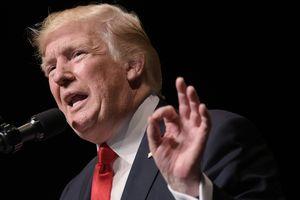 Трамп нашел деньги для строительства стены на границе с Мексикой