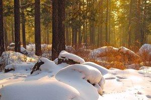 12 января: какой сегодня праздник, приметы и что нельзя делать