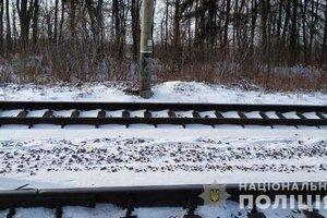 Под Запорожьем поезд сбил пьяного мужчину