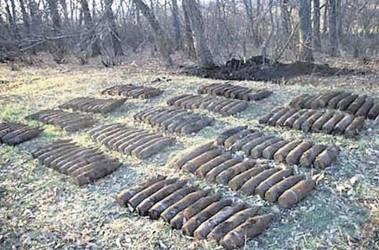 Раскопки вов в харьковской области видео скачать бесплатно книгу каталог монет