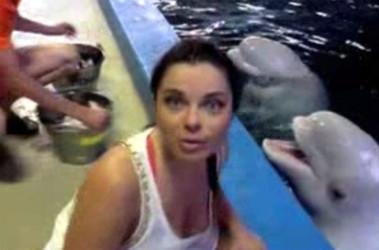 Наташа королева отдыхает с дельфинами