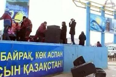 Видео про новости про медведей с коноплей