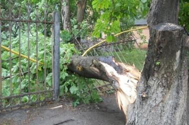 Ураган на Одесчине срывал крыши домов, сносил вековые ...: http://www.segodnya.ua/regions/odessa/urahan-na-odecchine-cryval-kryshi-domov-vyryval-vekovye-derevja-i-kruzhil-v-vozdukhe-betonnye-ctolby-foto.html