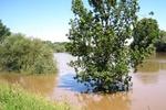 На западе Украины ожидают подъем уровня воды в реках до 1 метра
