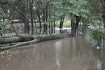 Страшный ураган в Приднепровье превратил дорогу в озеро, снес балкон с человеком и привалил маршрутку светофором
