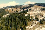 В Карпатах на выходные ждут снег
