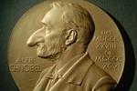 Шнобелевскую премию дадут за овец-правшей и уран из кока-колы