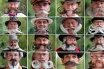 Во Франции прошел конкурс среди бородачей