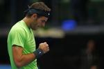 Аргентинский теннисист Дель Потро выиграл турнир в Вене
