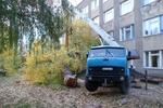 В Одессе дерево убило человека