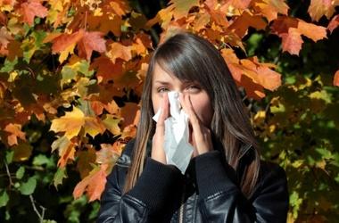 что можно от аллергии до года