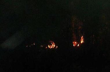 <p>Огонь уничтожил крышу здания. Фото: Apel-sin</p>