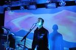 Дельфин в Харькове: погружение в музыку стоя и лежа