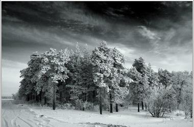 зима суровая фото