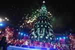 Прогноз погоды на Новый год и Рождество в Украине