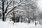 Рождество в Украине будет снежным